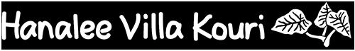 沖縄北部・古宇利島「ハナリ・ヴィラ・コウリ」- Hanalee Villa Kouri